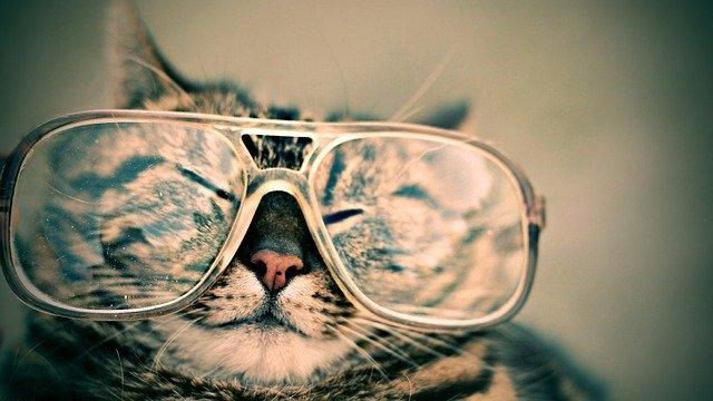 דברים שכדאי לדעת בבחירת משקפיים