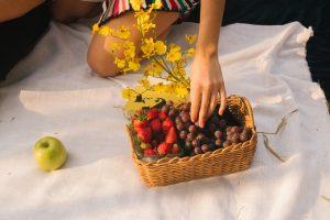 סלסלאות פירות